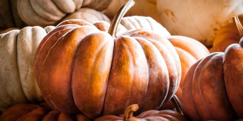 Come Cucinare La Zucca 5 Metodi Da Provare Gastronomia La Carne